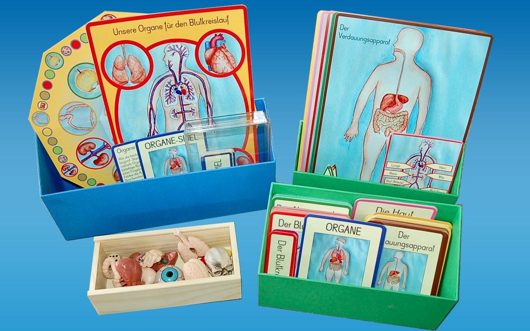 fc6665722ab0 NEUE Artikel bei BEL - Lernmaterial-Shop - BEL Montessori